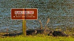 Plan Your Trip!