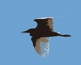 2017.12.25 La Chua Trail Egret Art 1