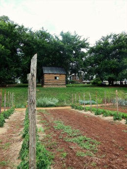 2017.06.25.Monticello TJ's Mulberry Row Slave Garden, Slave House, TJ's house in the back