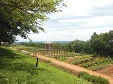 2017.06.25.Monticello TJ's Mulberry Row Slave Gardens